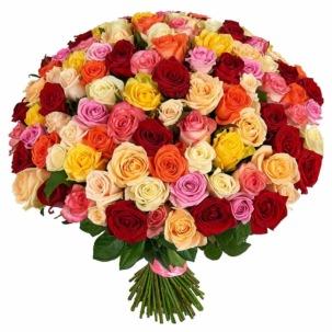 Розы Россия микс 3